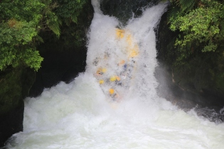 Okere Falls (26)