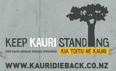 banner-keep-kauri-standing